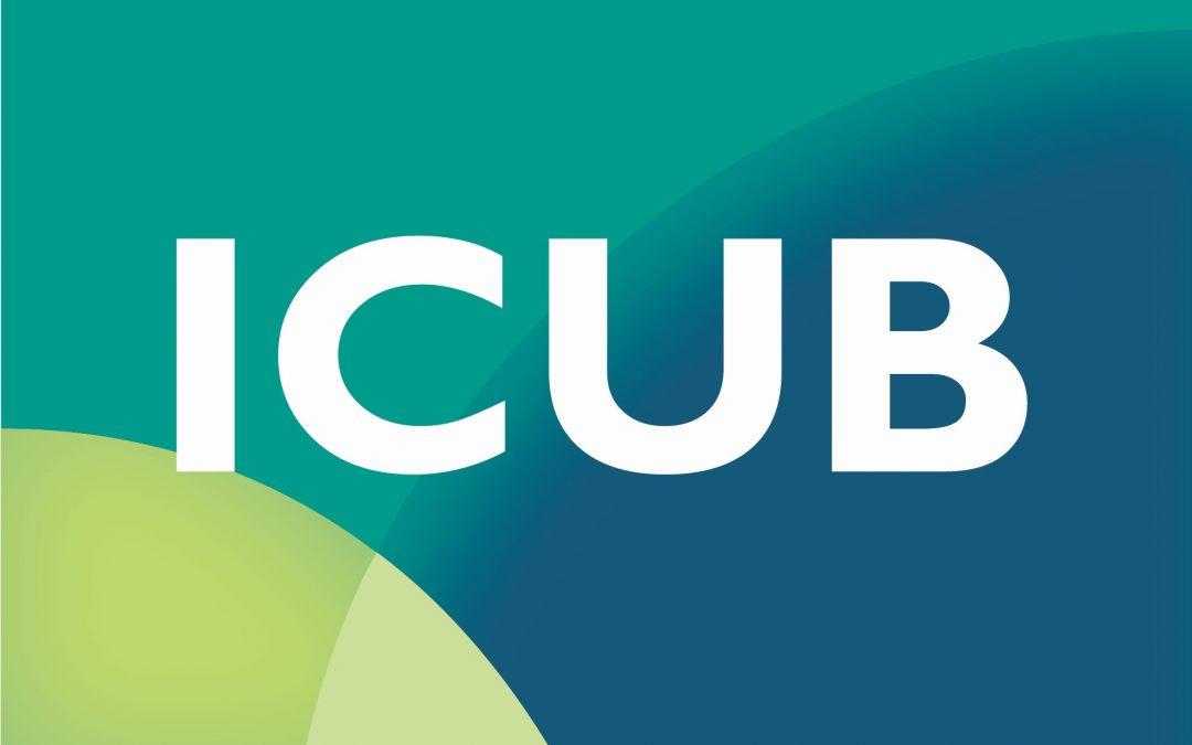 Seminarul de cercetare – 28.05.2020 – Oportunități de finanțare oferite de Institutul de Cercetare al Universității din București